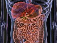 curatarea intestinului
