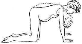 Exerciții in timpul sarcinii